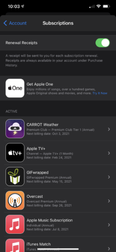 List of subscriptions prior to starting the free trial of Apple One. This includes the banner to try Apple One.