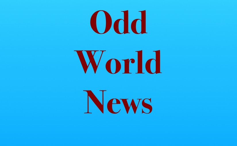 Odd World News Cover Art